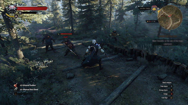 witcher 3 fight