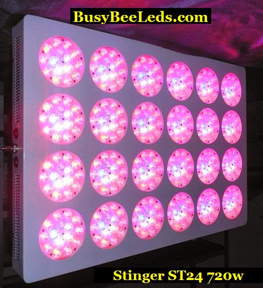 1# best Grow light for Pirce and wavelengths used period