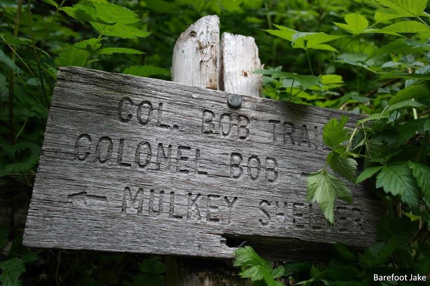 Colonel Bob Trial