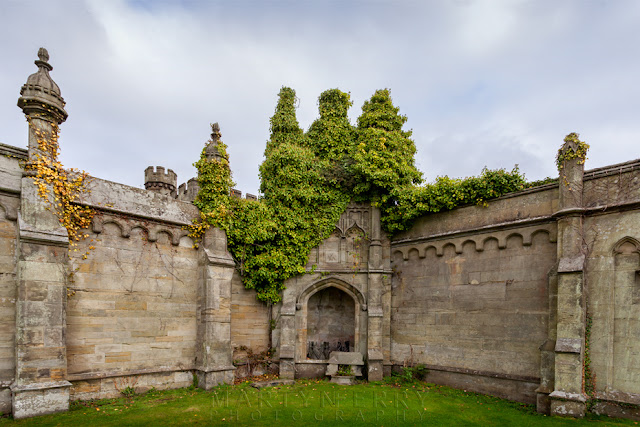 An outbuilding at Margam Castle is covered in ivy by Martyn Ferry Photography