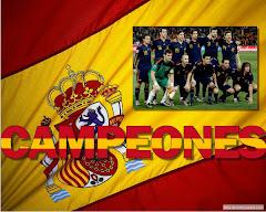 CAMPEONES DEL MUNDO: HOLANDA 0 ESPAÑA 1