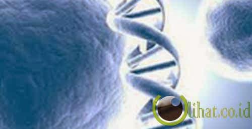 Penangkapan Pelaku Kriminal dengan DNA Pertama