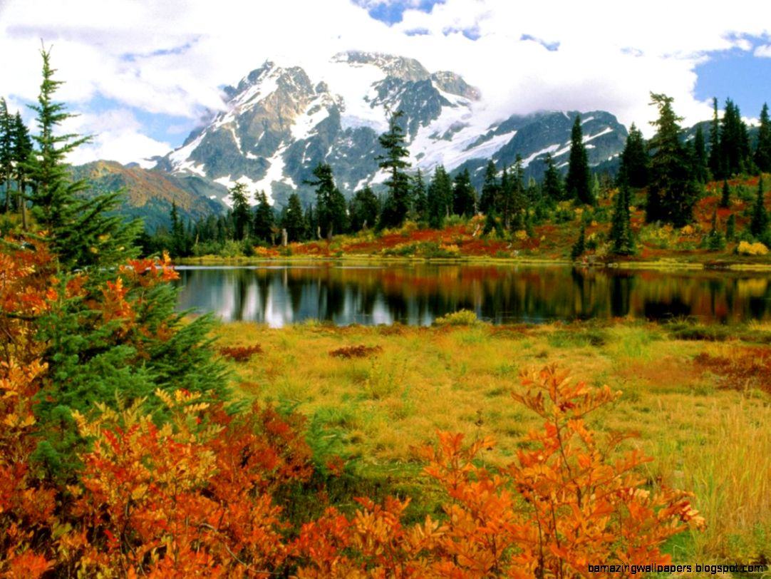 Fall Mountain Lake View widescreen wallpaper
