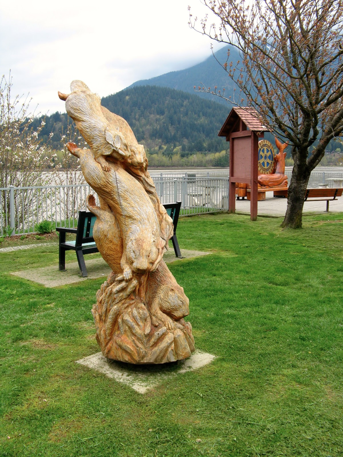 Powell river books chainsaw carvings in hope bc