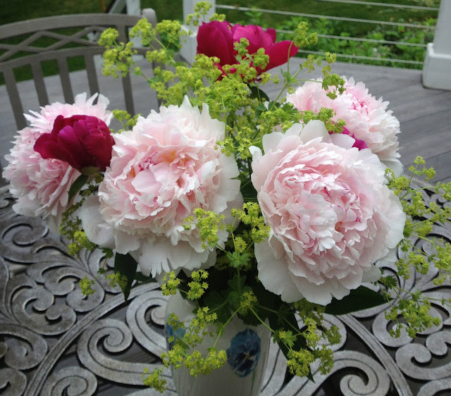 The Impatient Gardener -- The Garden Appreciation Society; peonies and Lady's Mantle