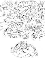 Alligator And The Babies Animal Printable Coloring Books