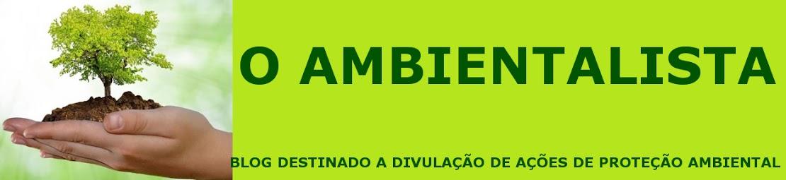 O AMBIENTALISTA