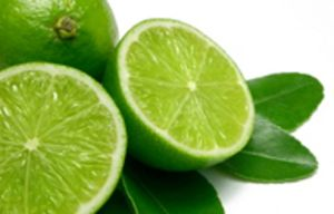 gambar jeruk nipis khasiat buah jeruk nipis