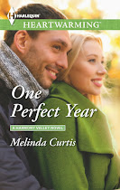 One Perfect Year