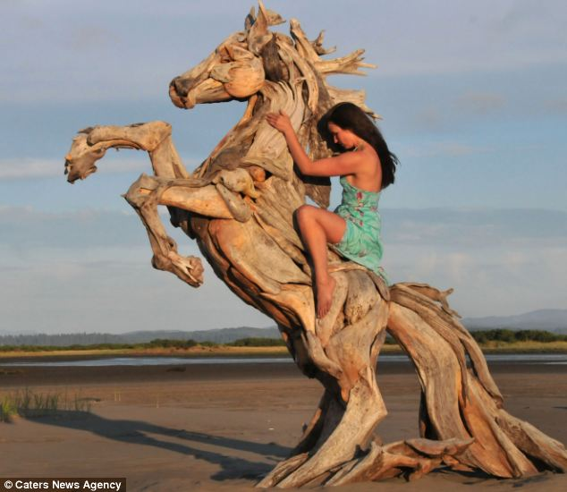 white wolf driftwood artist creates amazing animal. Black Bedroom Furniture Sets. Home Design Ideas
