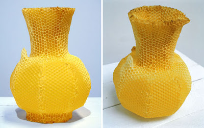 vase made by bees