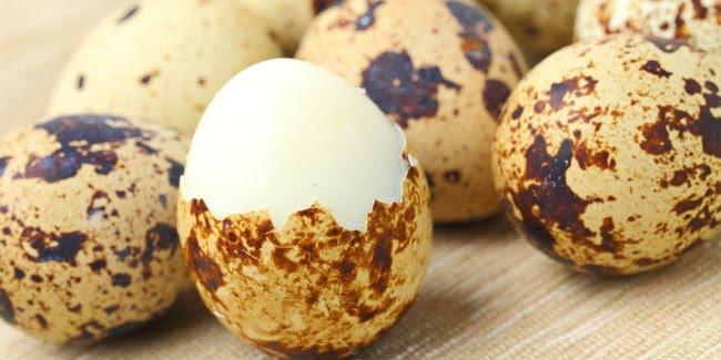 6 Manfaat Telur Puyuh Bagi Kesehatan