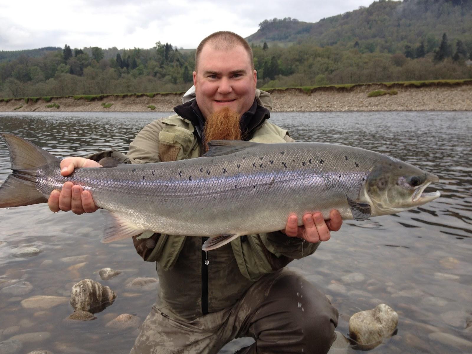Salmon fishing scotland salmon fishing scotland salmon for Fly fishing for salmon