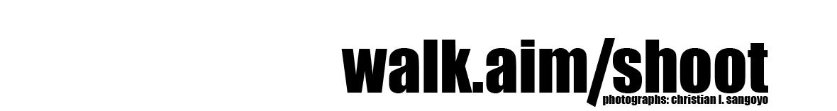 Walk Aim Shoot