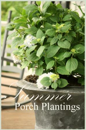 PLANTING HYDRANGEAS IN URNS