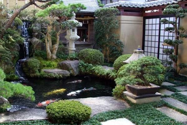 Hogares frescos los jardines japoneses una versi n en - Plantas para jardin japones ...