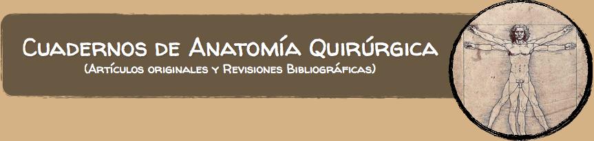 Cuadernos de Anatomía Quirúrgica: Estructuras laminares relacionadas ...