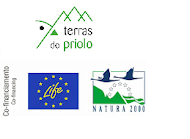 Programa Escolar do Centro Ambiental do Priolo apoiado por