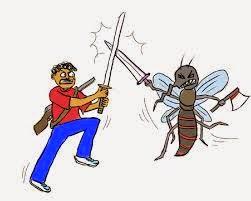 cerita lucu gokil nyamuk