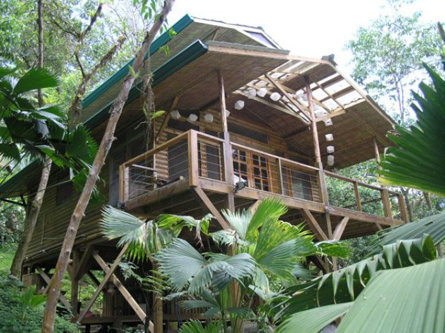 Cool high quality pix photos of incredible tree house in for Jungle house costa rica