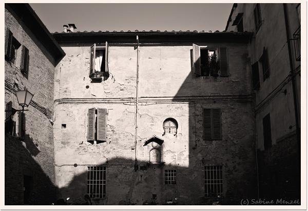 Psynopsis Siena Architecture Yard