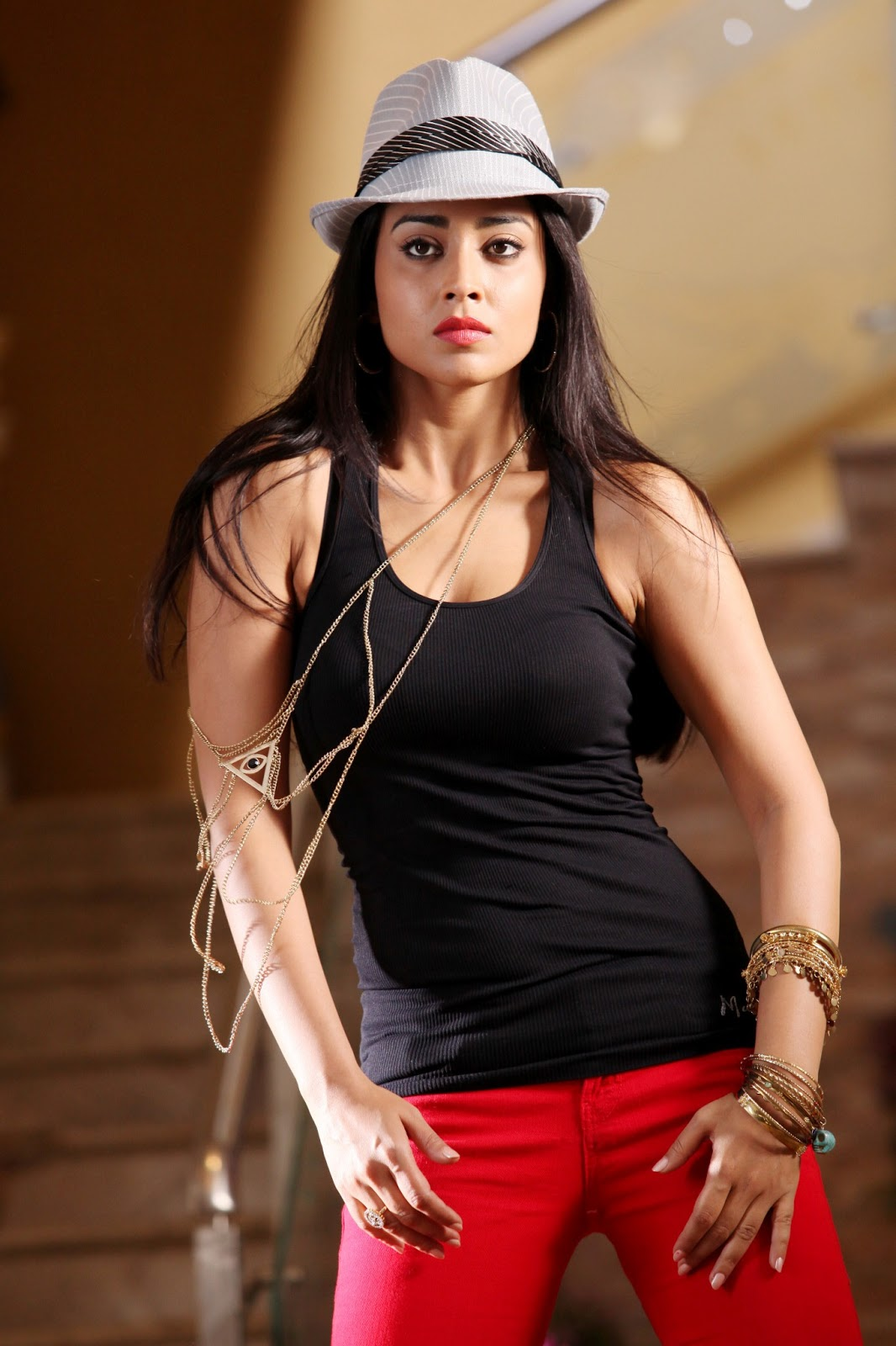 Shriya saran hd pic collection