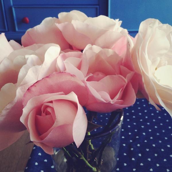 · tres por tres · noviembre 2014 · 02 · rosas