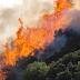 Σε ύφεση η πυρκαγιά στην Κίσαμο Χανίων...