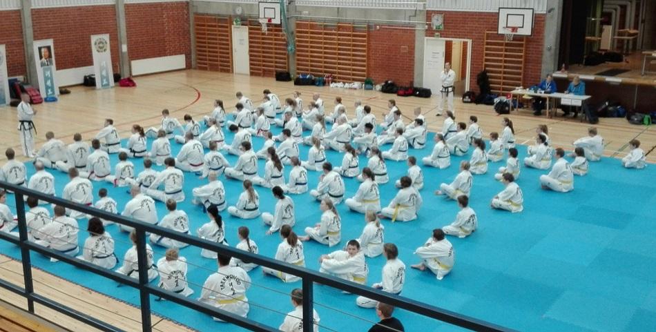 Taekwon-Do-leirin treenien aloitusta.