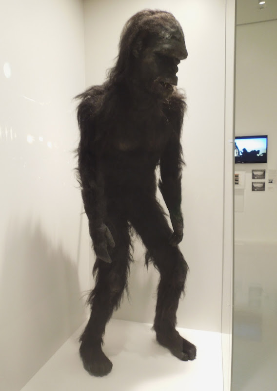2001 Space Odyssey Moonwatcher apeman costume