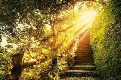 The Amazing Sun