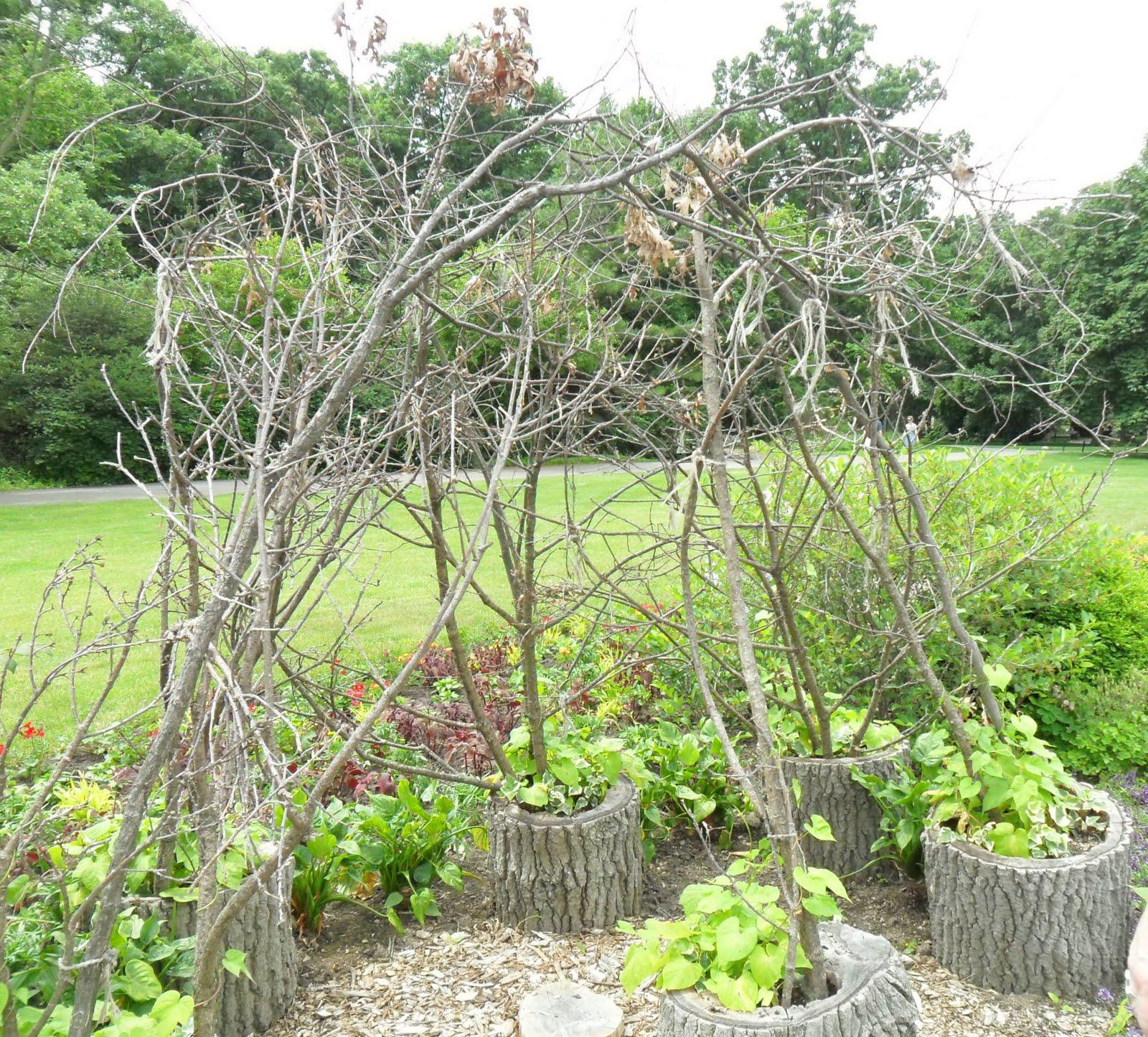 Backyard patch herbal blog cantigny garden ideas two for Hops garden designs