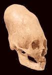 Característico da Nobreza Egípcia