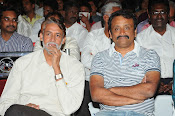 Pelladandi Preminchaka Matrame Movie Audio launch-thumbnail-10