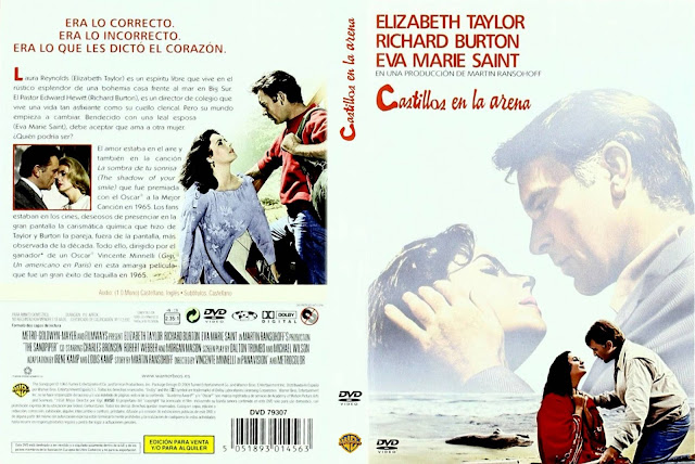 Cover, caratula, dvd:  Castillos en la arena | 1965 | The Sandpiper