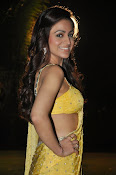 Aksha pardasany latest hot pics-thumbnail-4