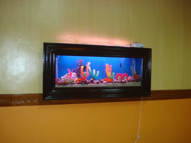 Wall Mounted Aquarium Wall Mounted Aquarium