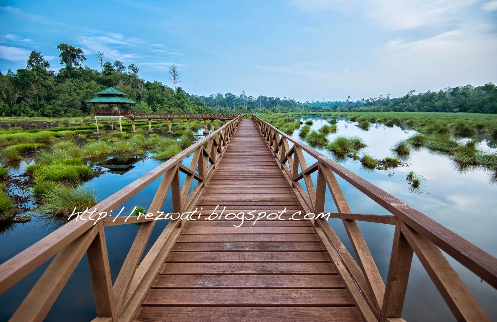 Luagan Lalak Forest Recreation Park