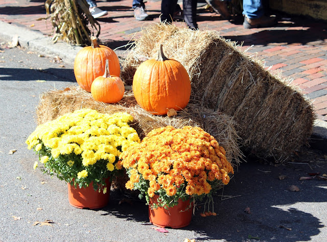 Halloween in Salem - pumpkins