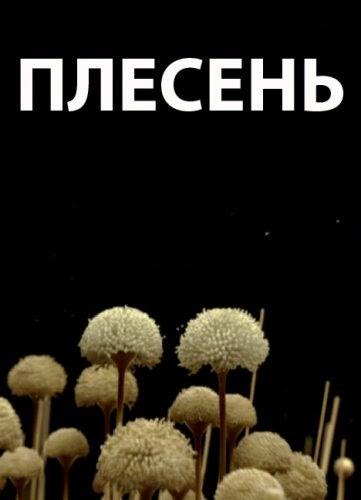 Плесен / Плесенъ (2008)