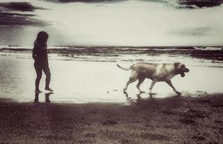 Cão labrador e uma criança na beira da praia.