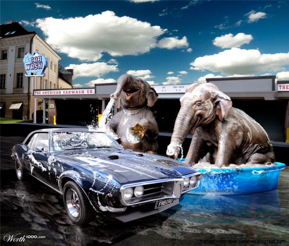 Unique Elephant Car Wash Design Logo Wallpaper Hd High Definitions