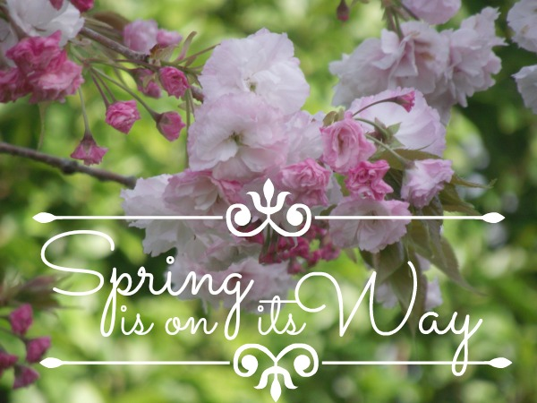 Image result for spring is on its way