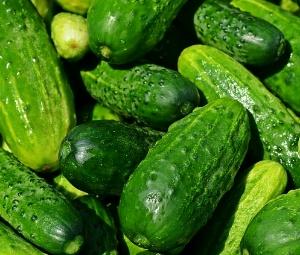 manfaat buah mentimun bagi kesehatan