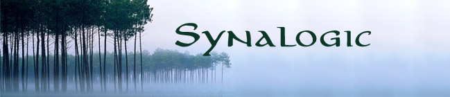 Trees in fog - Synalogic - The Website of Benjamin Poirier