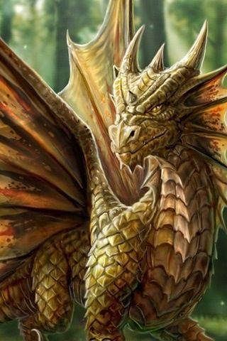 My Bloggy Dragon