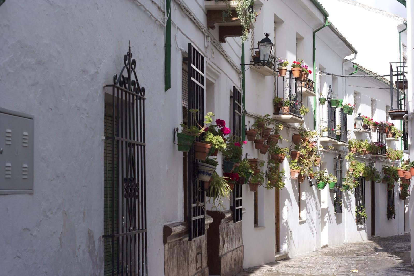 La cruz del sur factor a de melancol a - Casas tipicas andaluzas ...