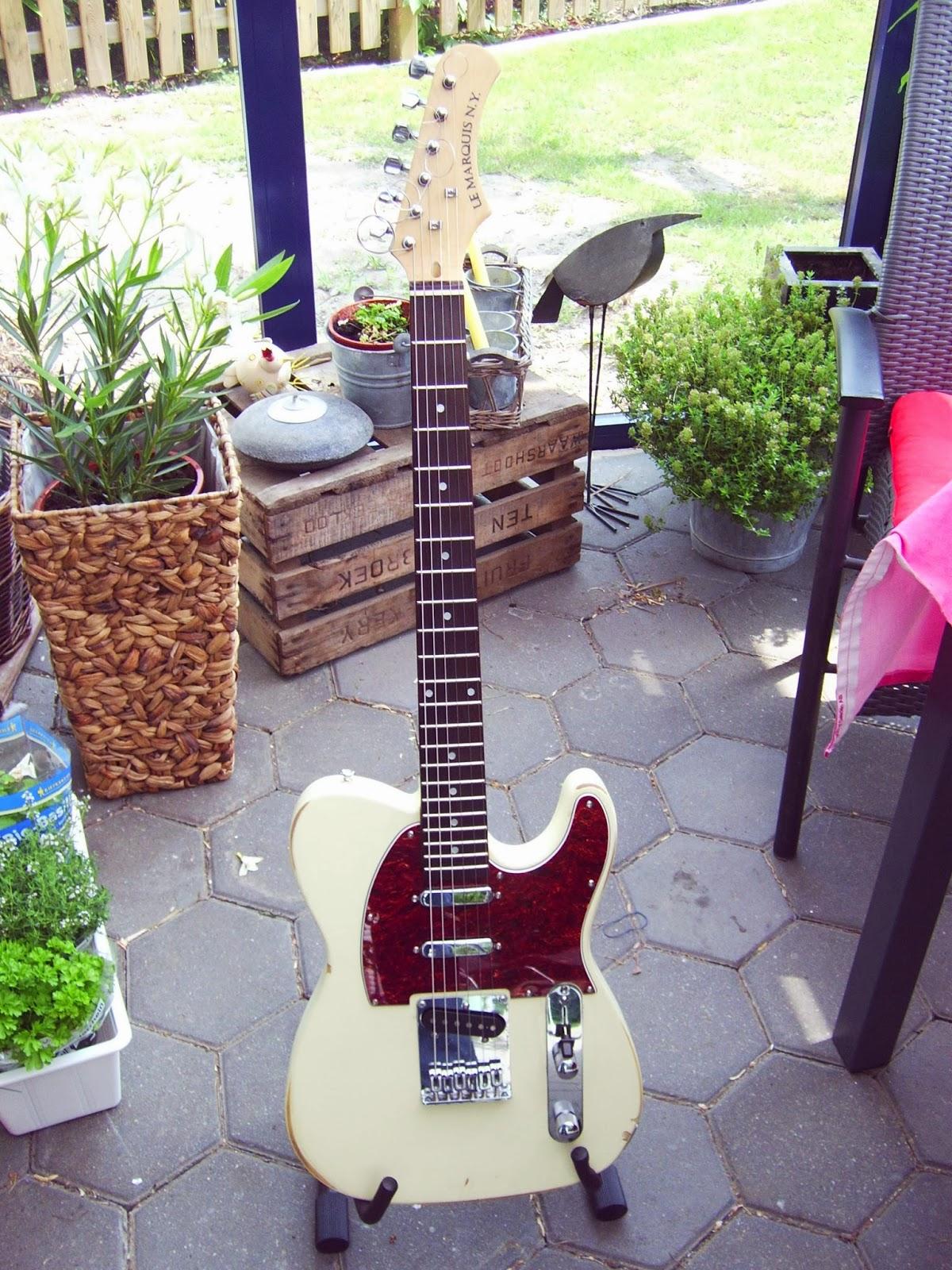 Großartig Stratocaster Schaltplan 5 Wege Schalter Fotos ...