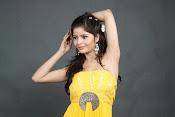 Gehana Vasisth Glamorous Photo Session-thumbnail-13
