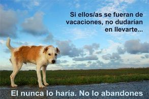 Muy humano: Abandono de seres leales.